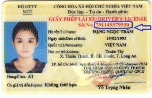 tra cứu giấy phép lái xe