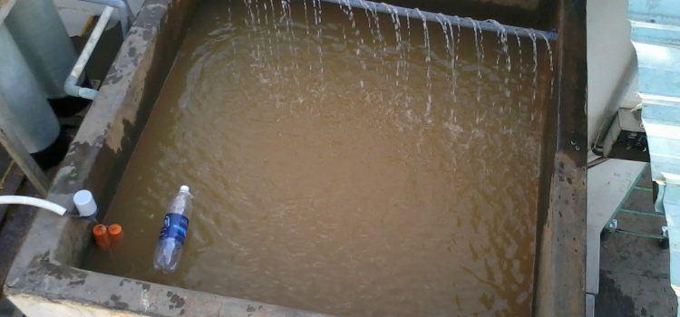 cách xử lý nước phèn